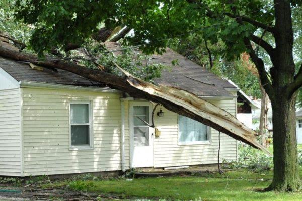 Has sufrido daños por el viento. ¿Qué pasa con tu seguro del hogar?